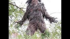 Bigfoot; The New Evidence